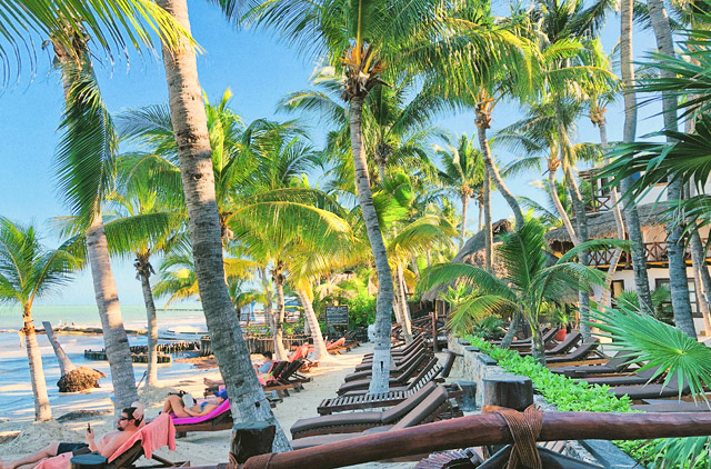 The Beach Bar Restaurant Punta Baja Set Under A Cozy Beachfront Palapa Overlooking Caribbean Sea Is Perfect Spot To Enjoy Tempting Dishes And